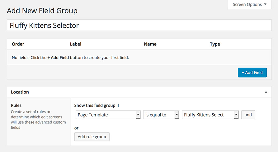 Creating a new Custom Fields group and setting rules
