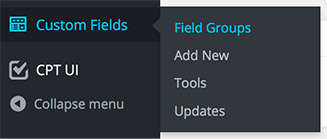 Custom Fields menu item in WordPress editor